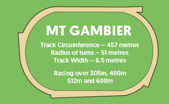 Mt Gambier track image