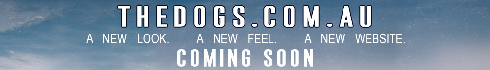 The Dogs - New Website Coming Soon